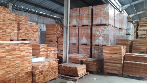 Papan kayu mahoni super flooring
