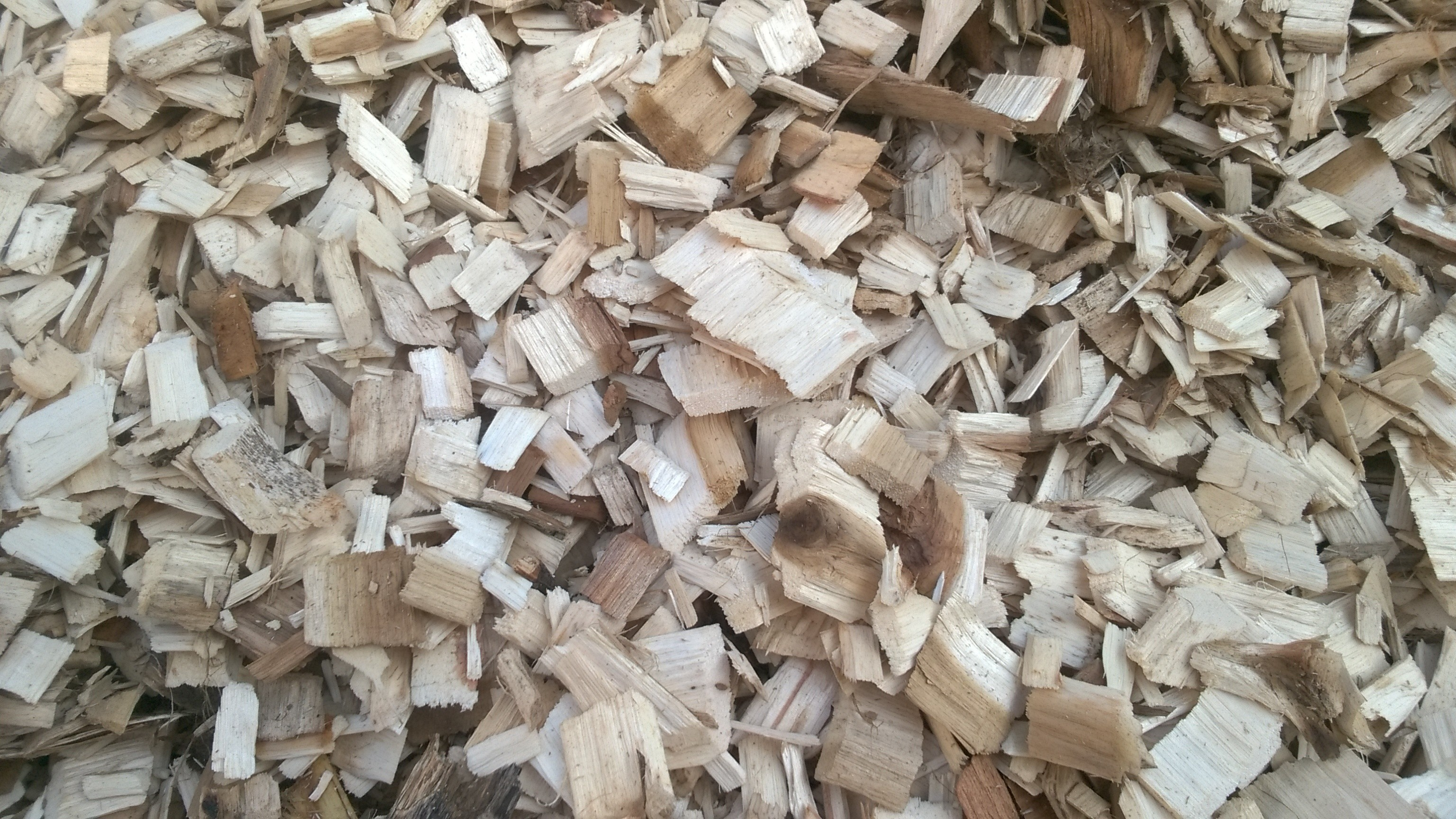 jualDicari : Wood Chips