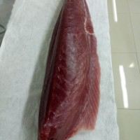 beli Beli Tuna Loin Big Eye