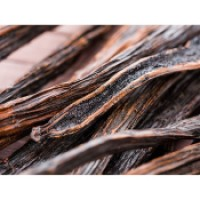 jual Ready Stock Vanilla Bean from PNG and Papua