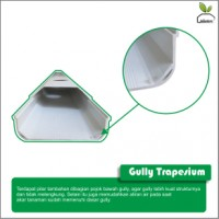 jual Gully Trapesium NFT