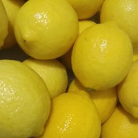jual lemon juice