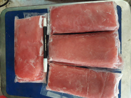 fillet ikan tuna