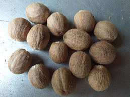 jualNutmeg and Mace #mandolokangspices
